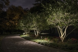 treeuplight